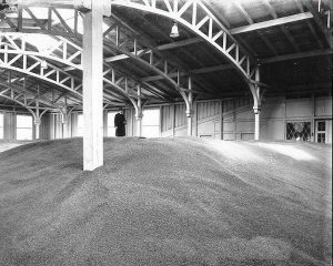 Oktober 2016. Arnbjerg pavillonen som kornmagasin 1916